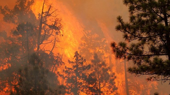 In Oregon, firefighters are racing and trying to slow down the two wildfires. The wildfires are merging and becoming as single inferno on Friday