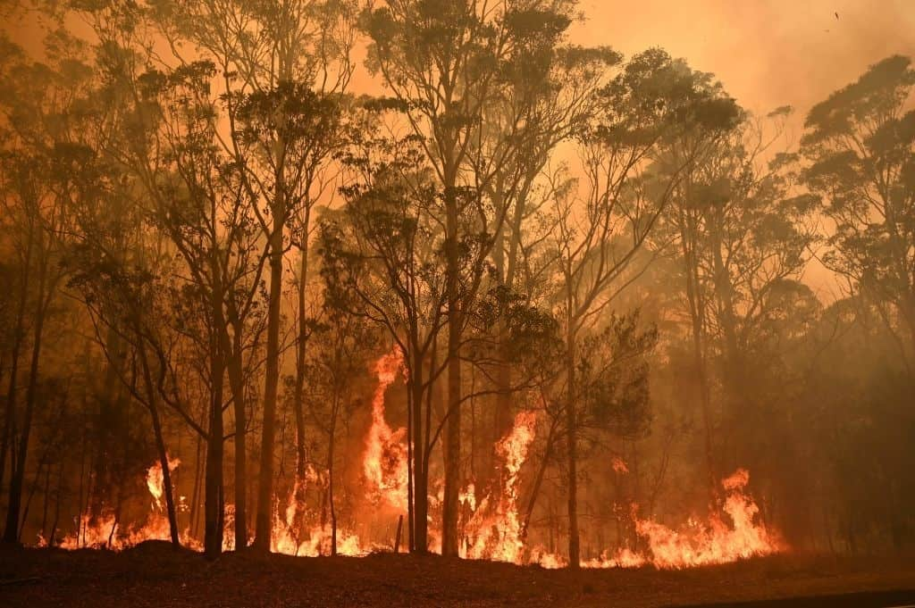 Oregon and California may get some relief from wildfires if the weather cooperates