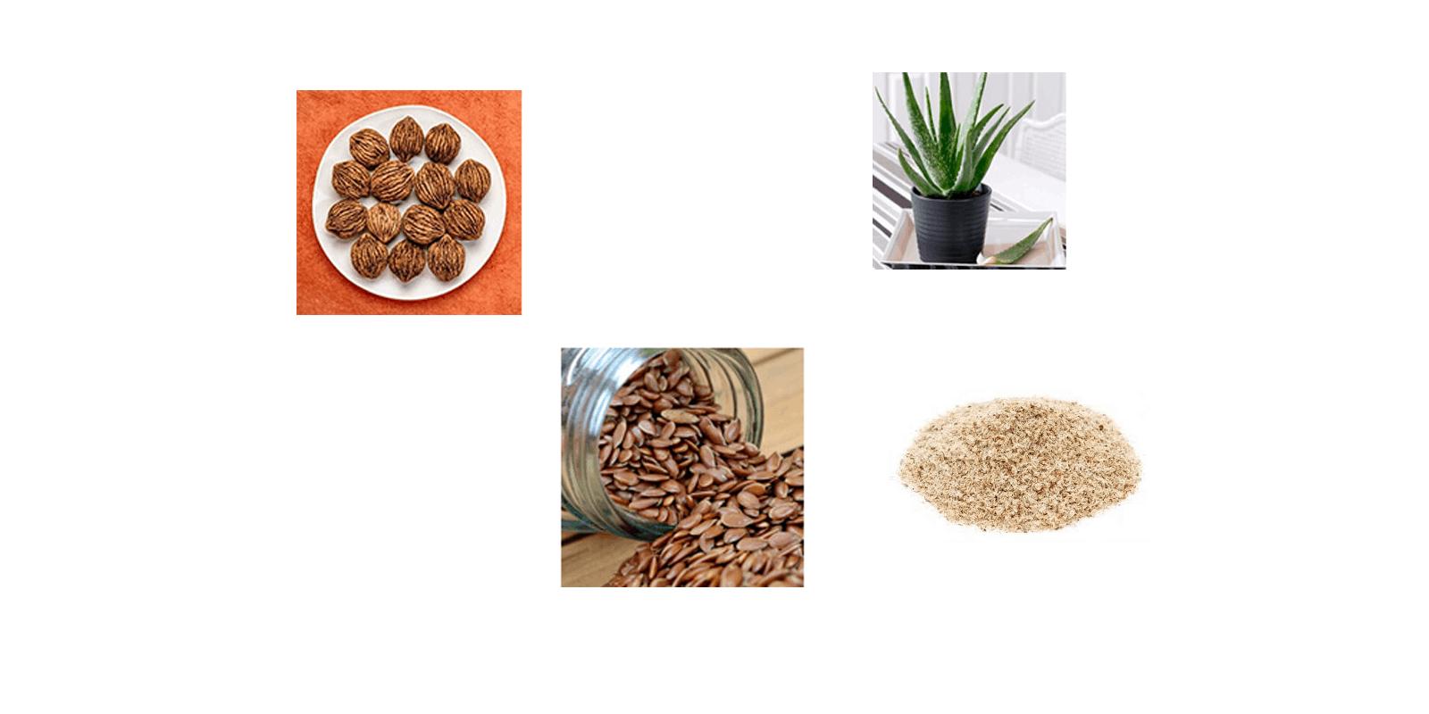 lean body burn ingredients