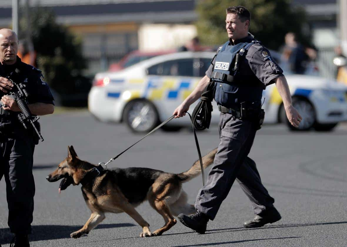 No one is accountable when police dog bite