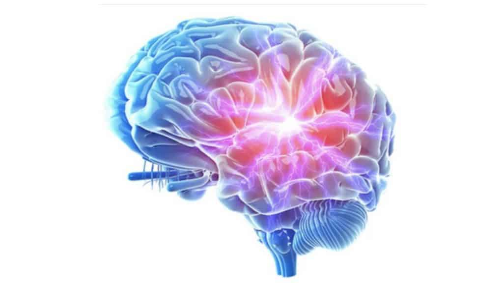 Silencil-Reviews-brain health