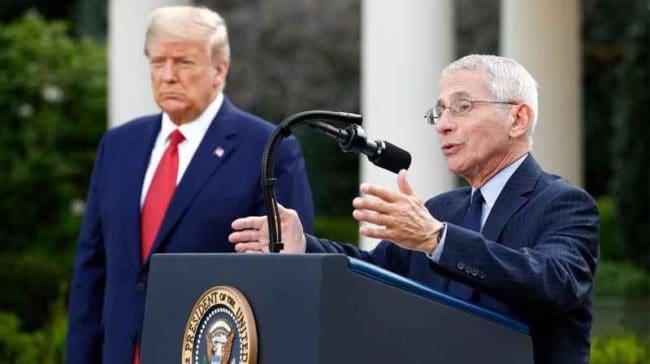 The-war-between-Fauci-and-Trump-as-Trump-called-Fauci-a-disaster