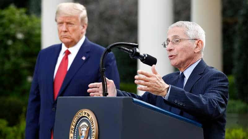 The War Between Fauci And Trump As Trump Called Fauci a Disaster