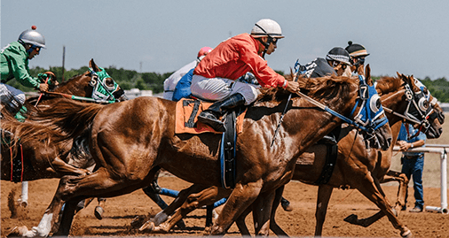 Lockdown Bets horse betting system
