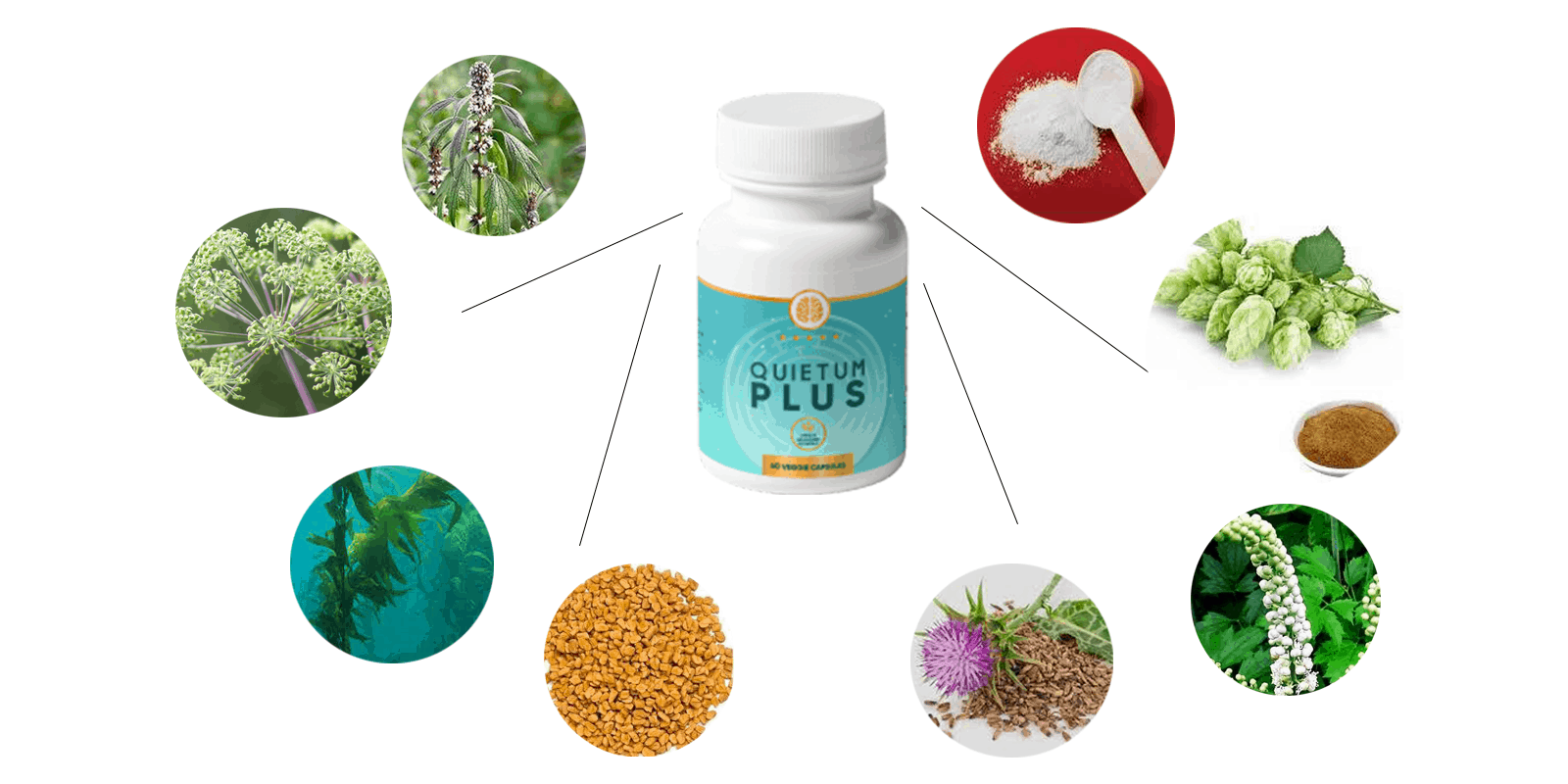 Quietum Plus ingredients
