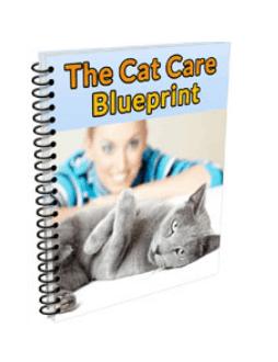 Bonus #3 The Cat Care Blueprint