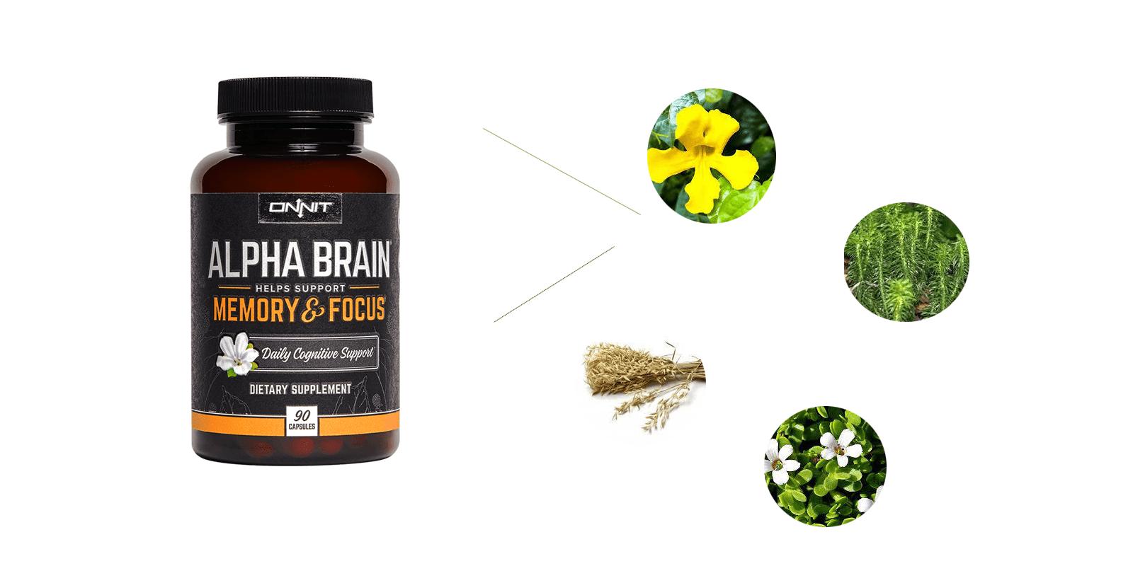 Onnit Alpha Brain Supplement ingredients