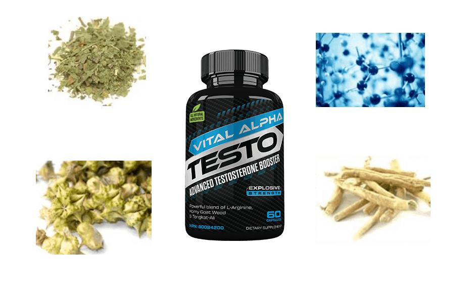 Vital Alpha Testo-ingredients