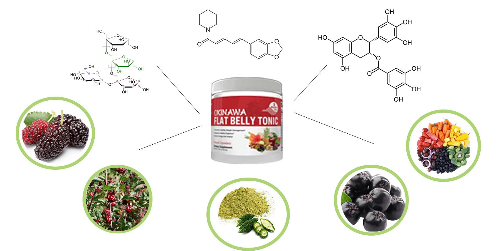 Okinawa-flat-belly-tonic-ingredients