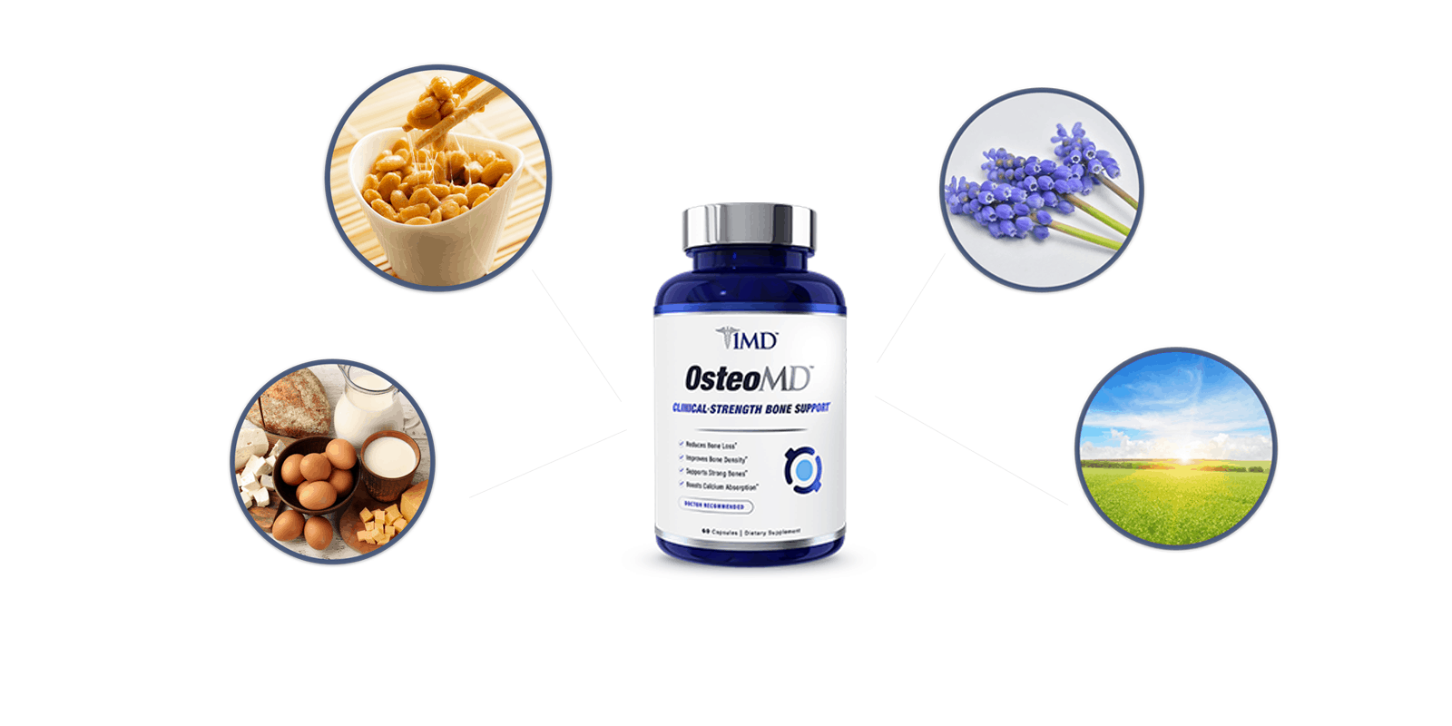 OsteoMD ingredients