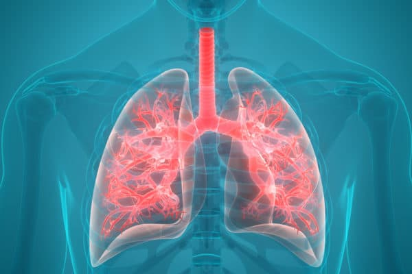 Methylmalonic Acidemia Patients Have A Newly Developed Breath Test