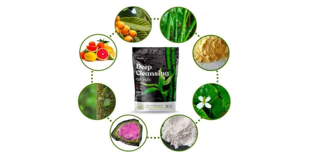 Nuubu Detox Patch Ingredients