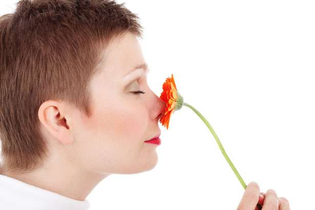 Anosmia, Loss Of Smell Can Be Caused By Air Pollution