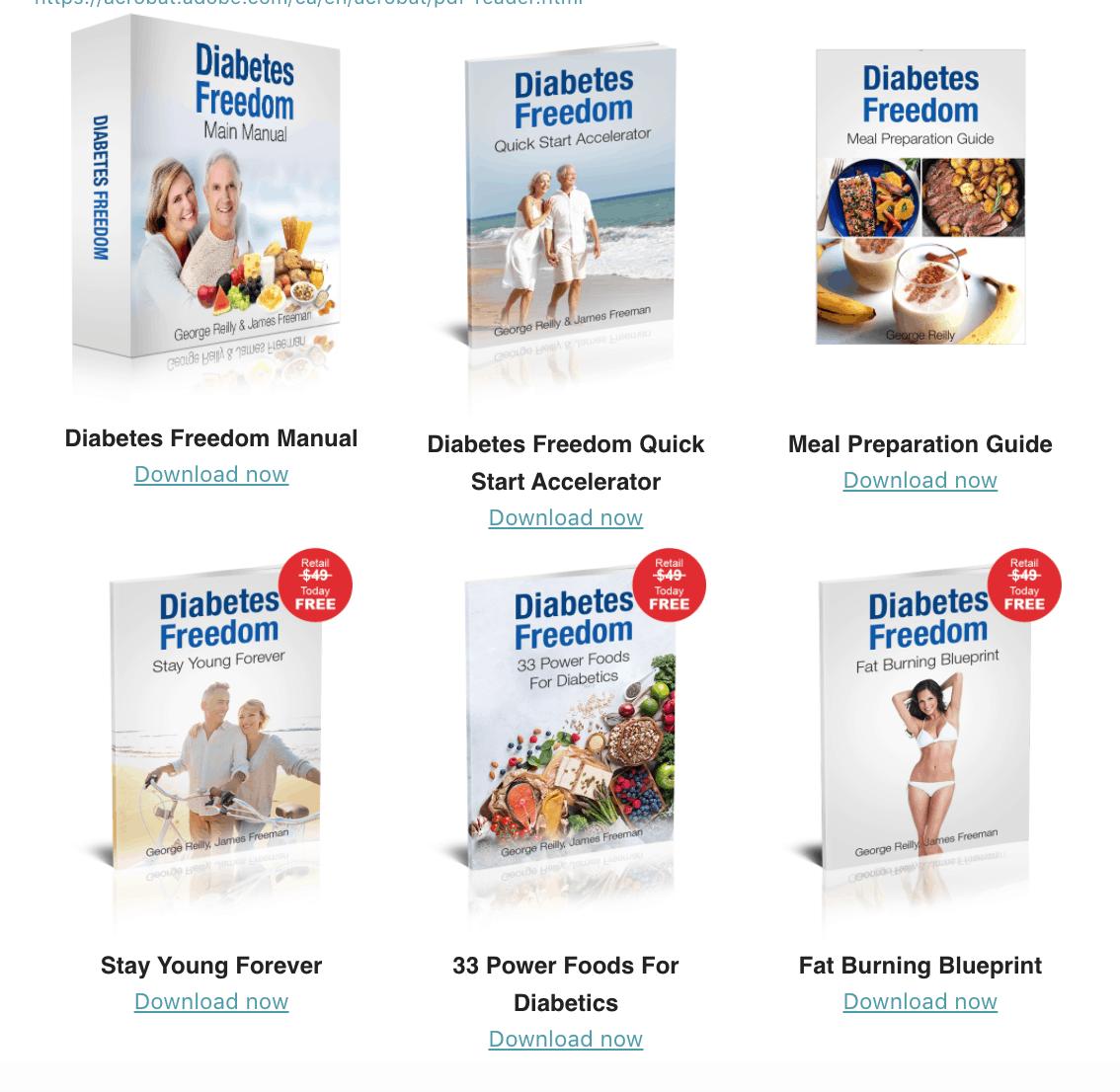 Diabetes Freedom main manual