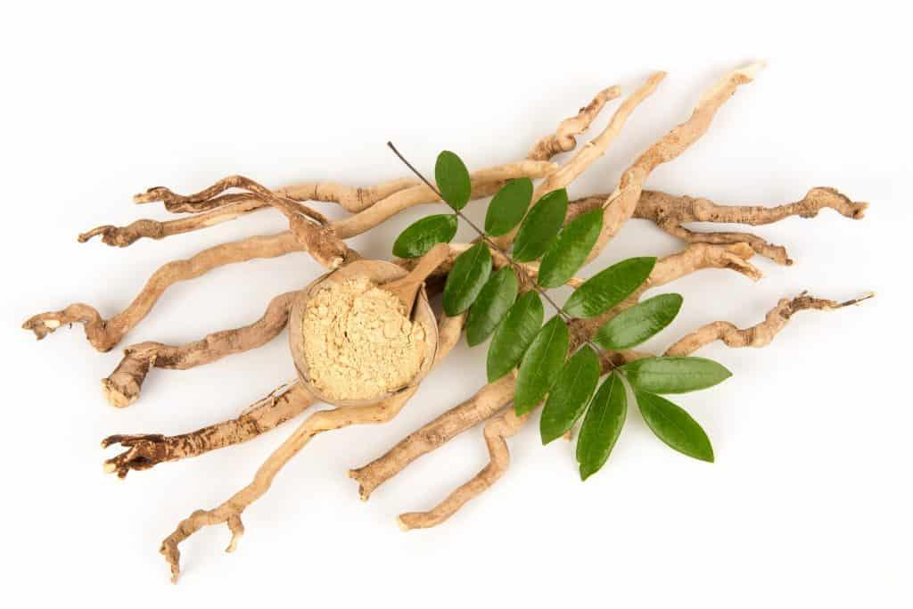 Eurycoma Longifolia Extract