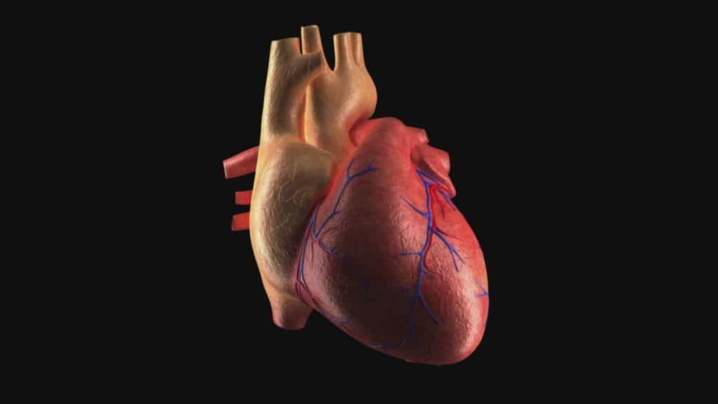 There Is A Sign That Heart Inflammation And Coronavirus Are Connected
