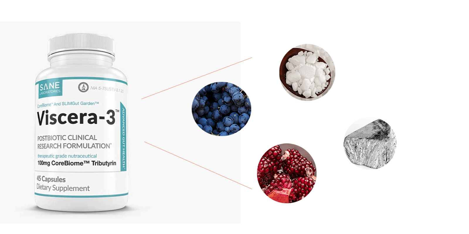 Viscera-3 ingredients