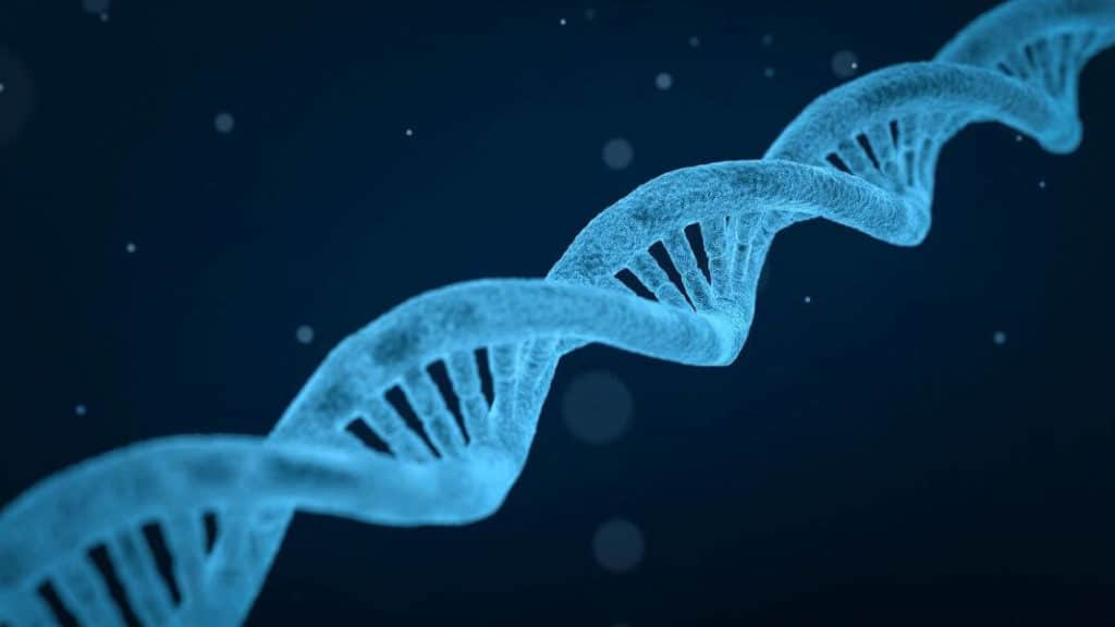 CRISPR Therapy Can Fight Diseases Where Protein Blocks Organs
