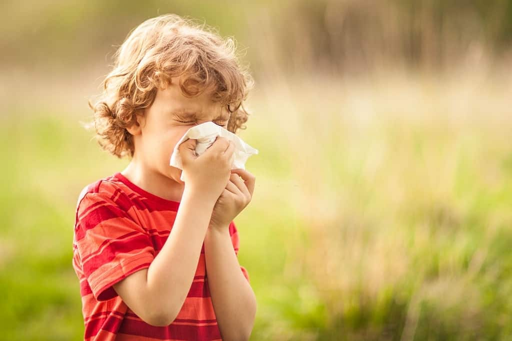 Keeping Asthma And Allergy Kids Safe At Camp