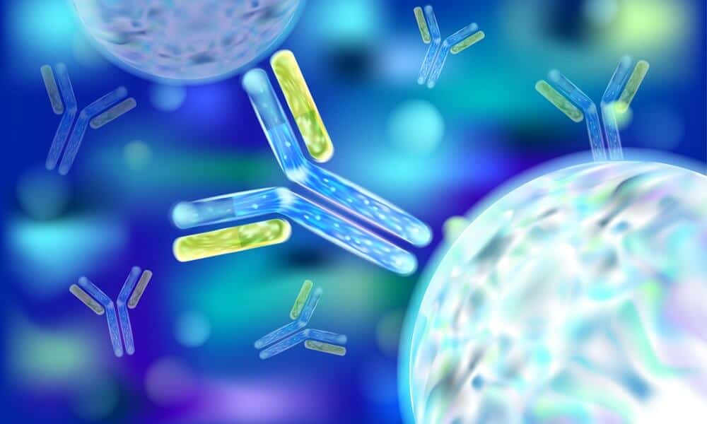 This New Knowledge Could Enhance Immunologic Cell Treatments