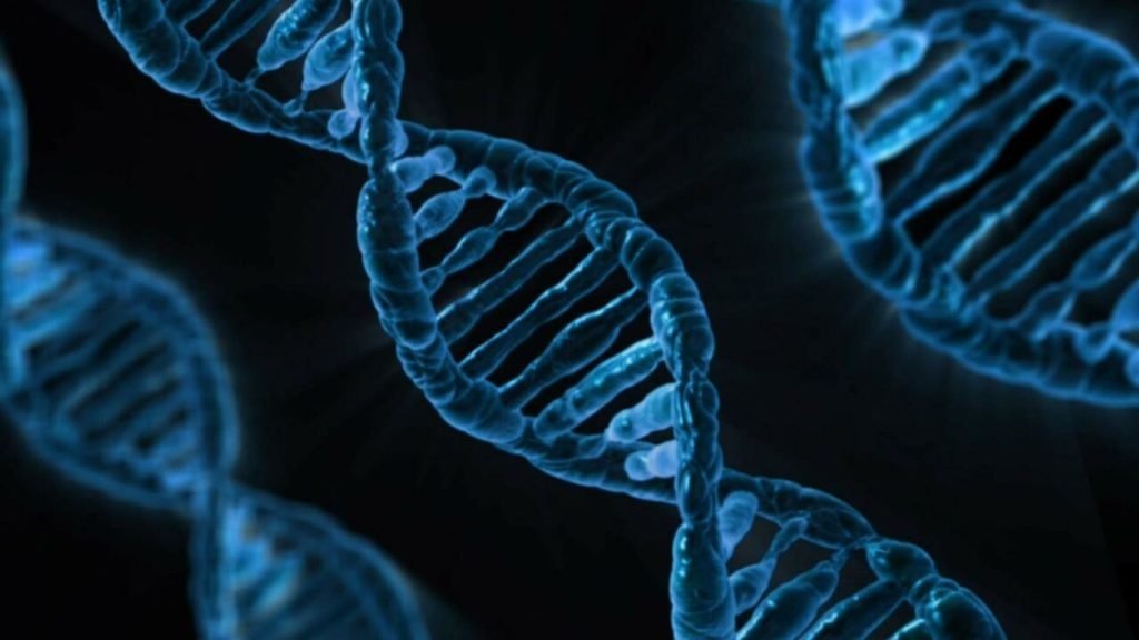 New Technique Illuminates DNA Helix