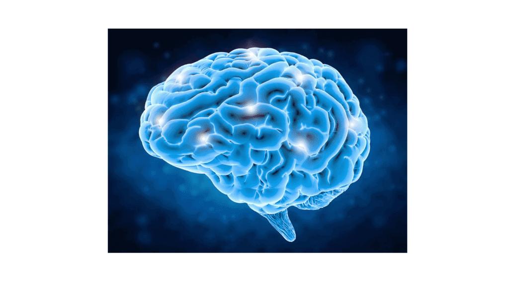 ReMind Solution - Brain