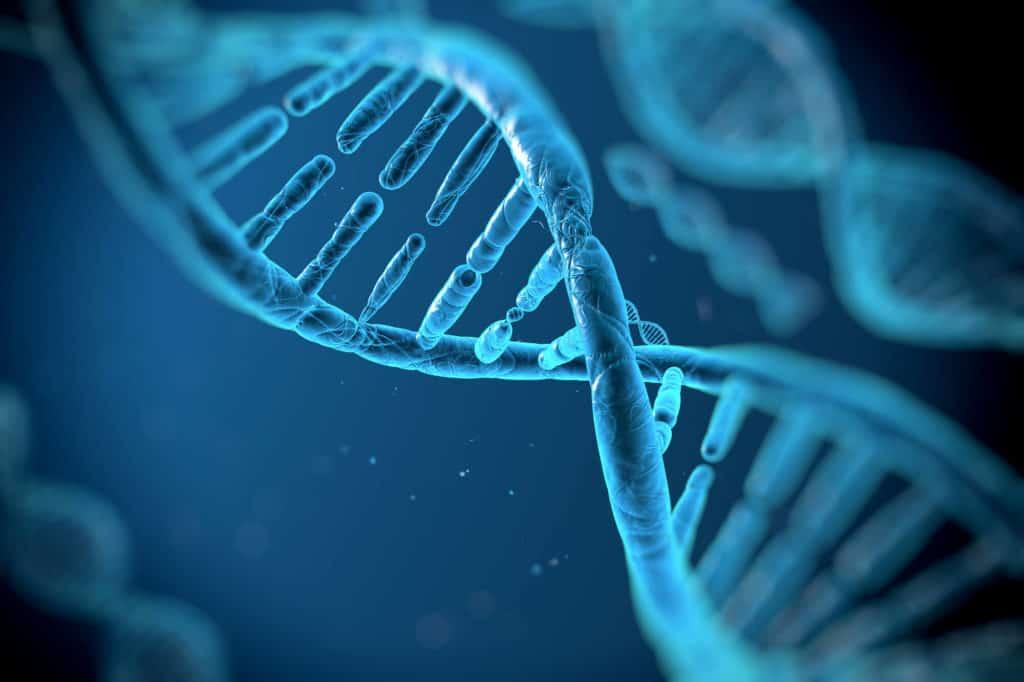 Study Reveals Melanoma DNA Mutation Source