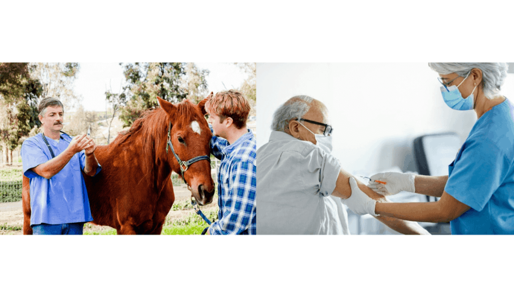 The Food And Drug Administration Advises Against The Use Of Animal Dewormer For Covid-19 Therapy Or Prevention