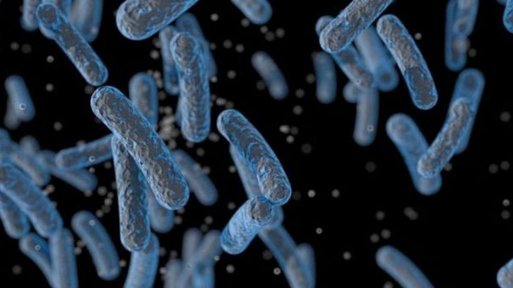 The United States Warned About The New Bacterial Disease