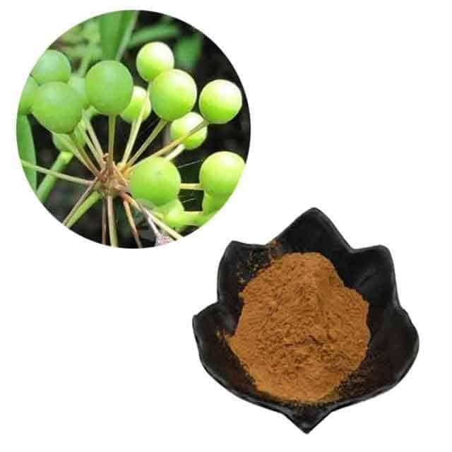 Alpha Edge Male Enhancement Ingredient-Sarsaparilla Extract