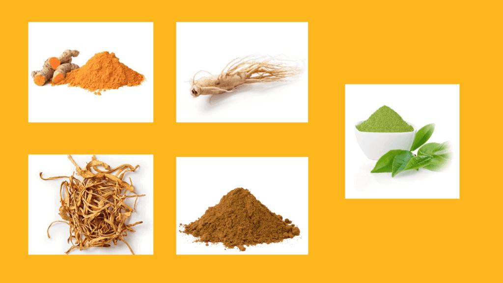 Spore Metabolic Boost Ingredients