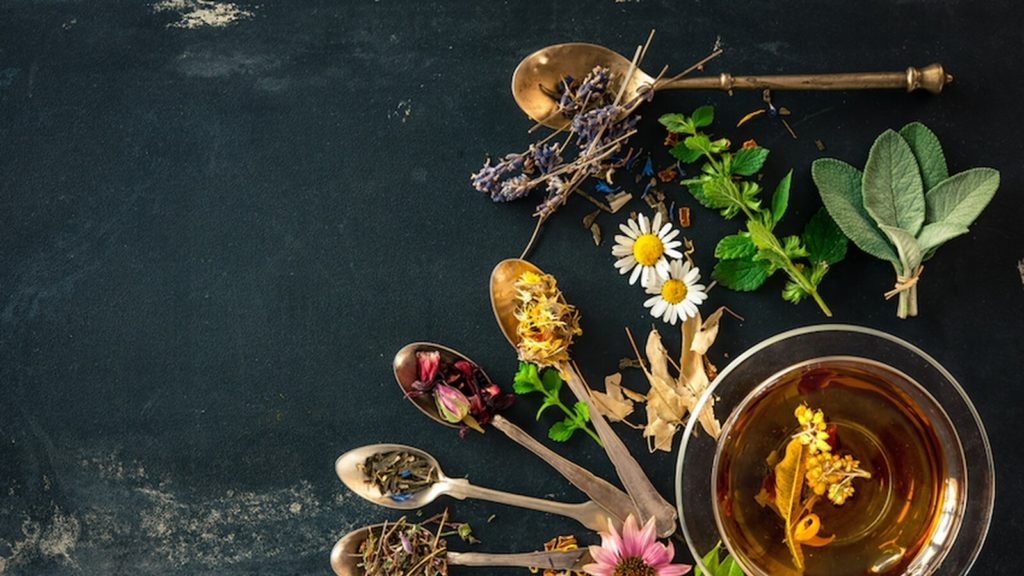 Women In West Virginia Are Looking To Share Their Experience Of Herbal Remedies Via Sacred Roots'
