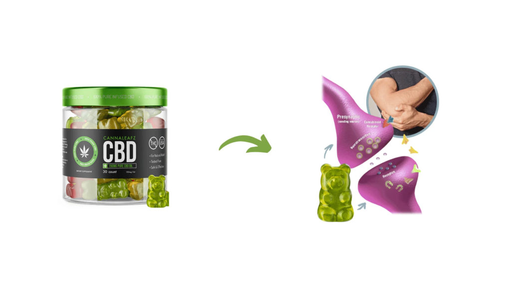 CannaLeafz CBD Gummies Benefits